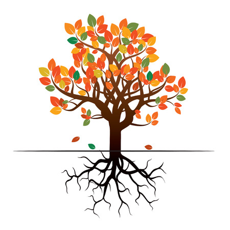 leafs: Color tree, leafs and roots. Vector Illustration. Illustration