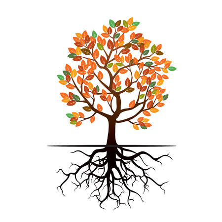 root: Color tree, leafs and roots. Vector Illustration. Illustration