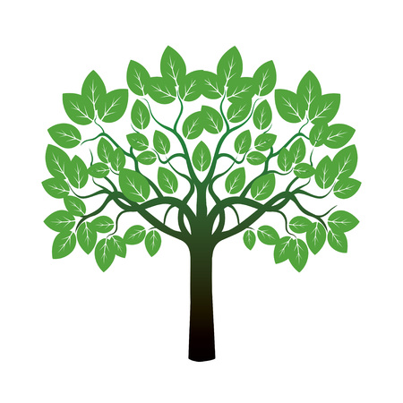 leafs: Tree and Green Leafs. Vector Illustration.