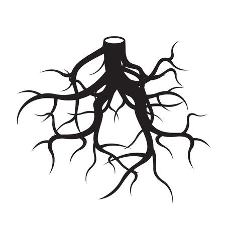 hape: Black roots. Vector Illustration. Illustration
