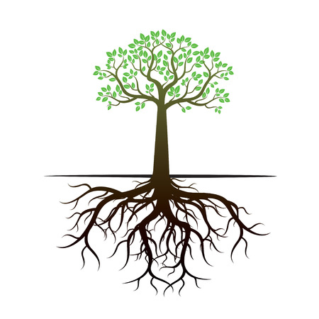 Tree and Roots. Vector Illustration.