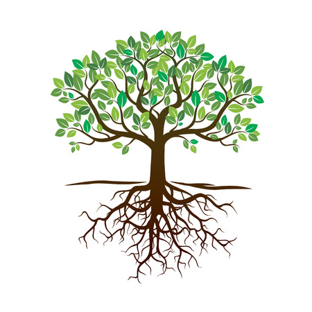 Green Tree and Tree. Vector Illustration.