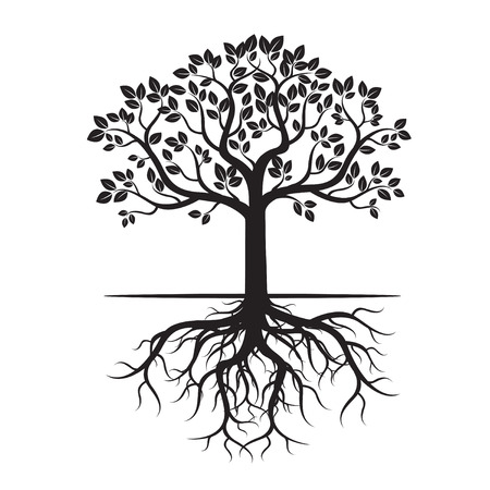 Black Tree Roots and background. Vector Illustration. Vectores