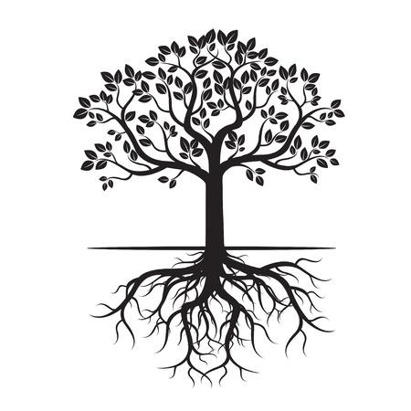 Korzenie Czarnego Drzewa i tło. Ilustracja wektora. Ilustracje wektorowe
