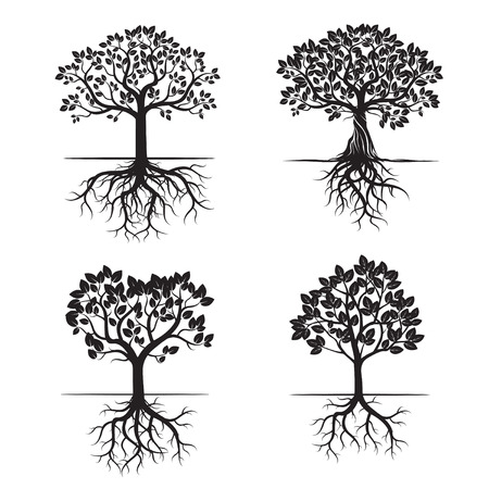 Set of Black Trees and Roots. Vector Illustration. Illustration