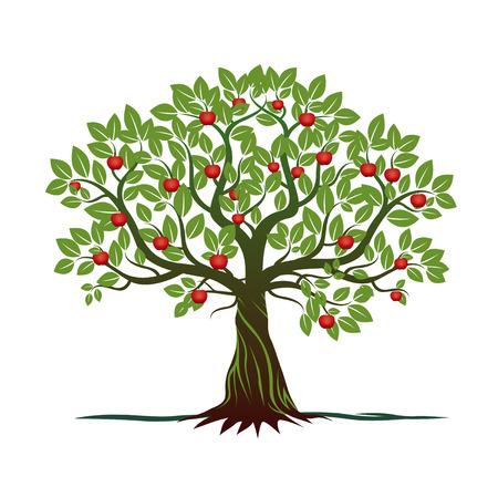 Green Apple Tree. Vector Illustration. Vettoriali