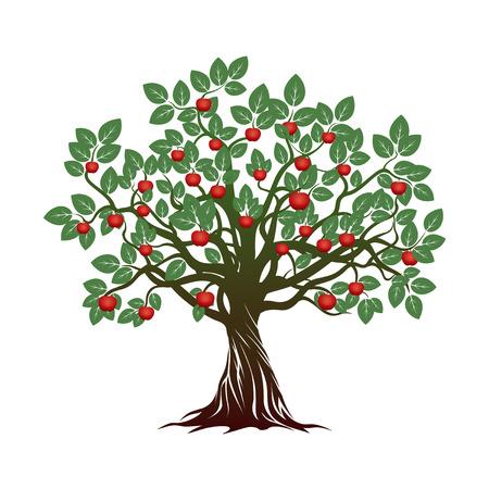 Green Apple Tree. Vector Illustration. Vectores