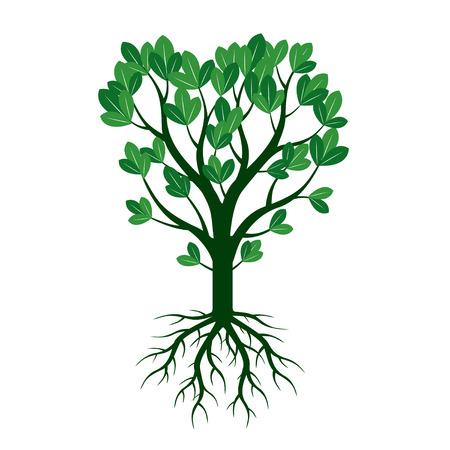 hojas de arbol: �rbol y ra�ces Verde.