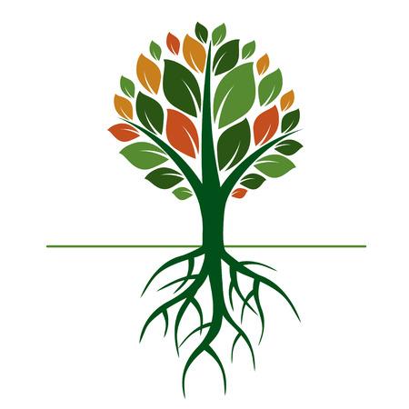 Árbol y raíces Verde. Ilustración de vector