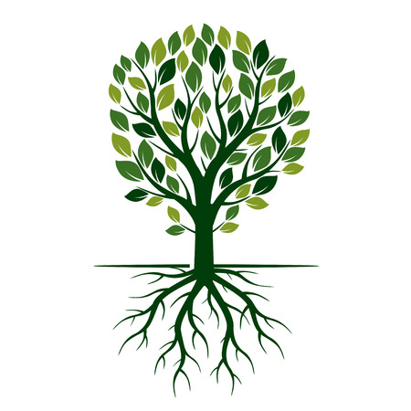 roots: Green Eco Tree and Roots. Vector Illustration.