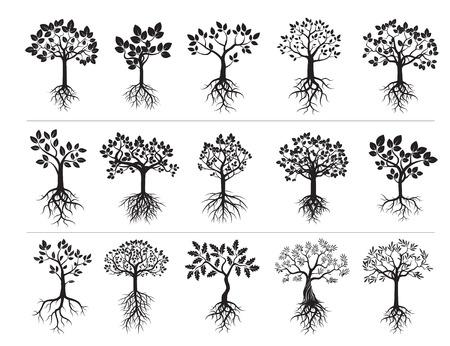 Set van zwarte bomen. vector Illustration