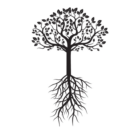roots: Black Tree and Roots. Vector Illustration