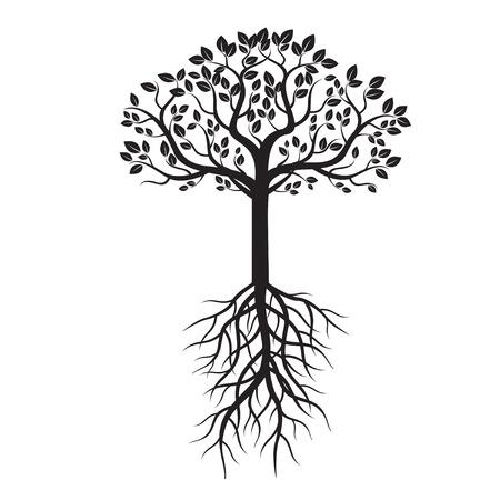 arbol raices: Árbol negro y raíces. Ilustración del vector