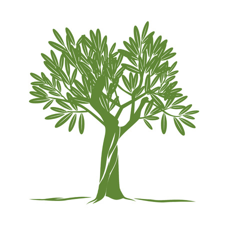 Green Olive Tree. Vector Illustratie.