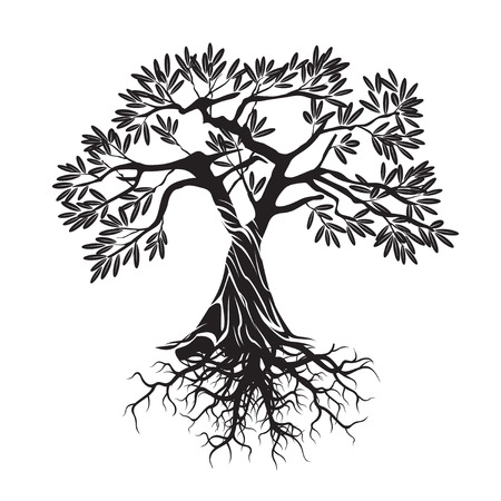 Black Olive Tree. Vector Illustration. 矢量图像