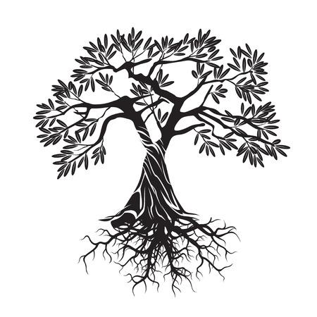 Black Olive Tree. Vector Illustration. Stock Illustratie