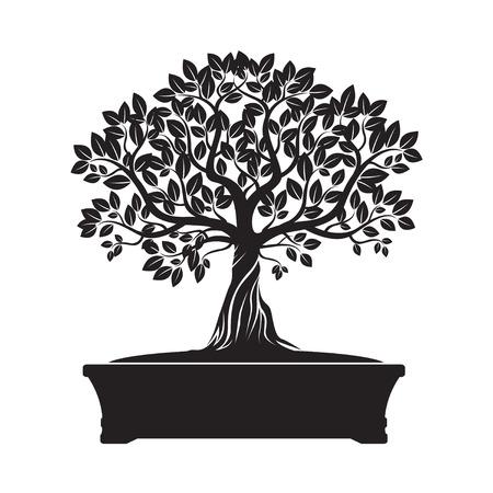 bonsai tree: Black Bonsai Tree. Vector Illustration.