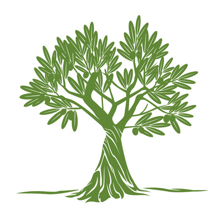 olive green: Green Olive Tree