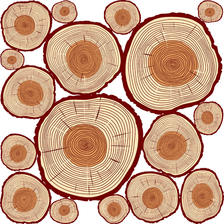 wooden circle: Color Rings of Tree. Illustration and Background. Illustration