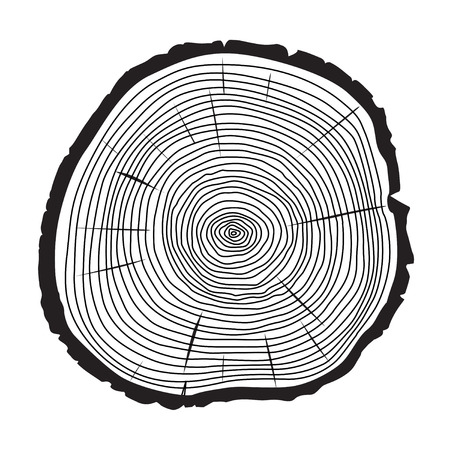 tree cross section: Black Rings of Tree. Illustration and Background.