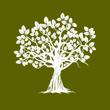 Albero Bianco. Illustrazione vettoriale. Vettoriali