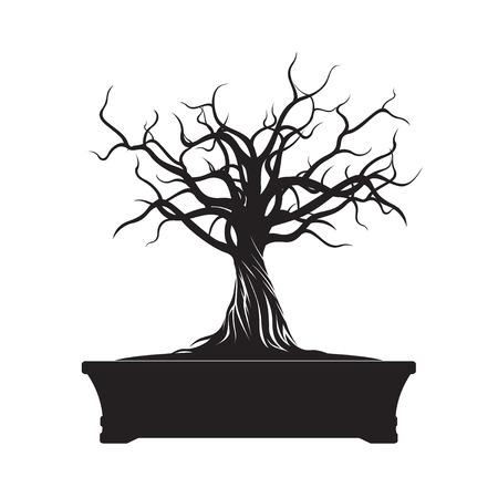 bonsai: Black Bonsai Tree. Vector Illustration.