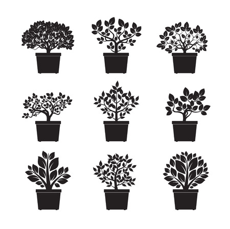 Set of black Flowers in Pot. Vector Illustration. Vectores