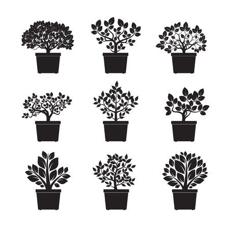 Set of black Flowers in Pot. Vector Illustration. Illustration