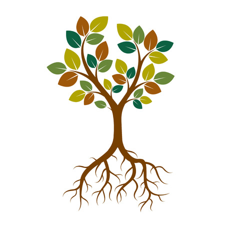 Color Tree and Roots. Vector Illustration. Vectores