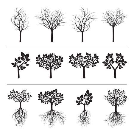raices de plantas: Conjunto de árboles Negro. Vectores