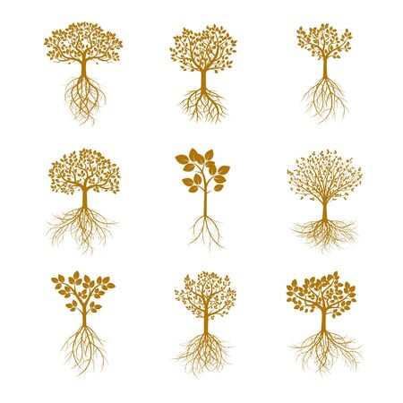 gold leafs: Set of Golden Trees. Vector Illustration.