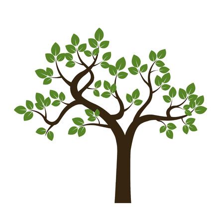 Albero verde. Illustrazione vettoriale. Archivio Fotografico - 66584900