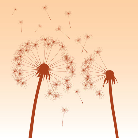 article icon: Color Dandelions. Vector Illustration