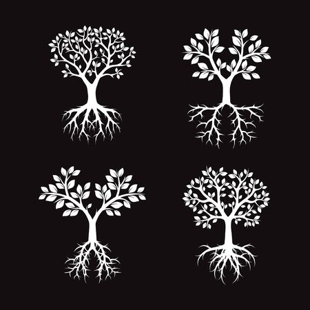 black and white: White Trees and black background. Vector Illustration