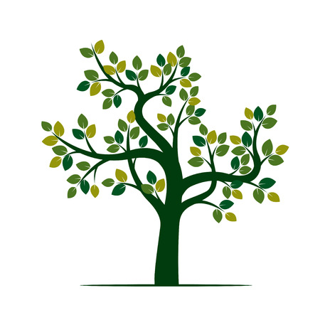 Green Tree. Vector Illustration and nature element.