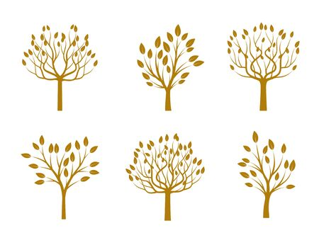 Set of Golden Trees with Leafs. Vector Illustration and graphic design.
