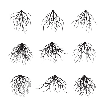 Collection of black roots. Vector Illustration Vettoriali