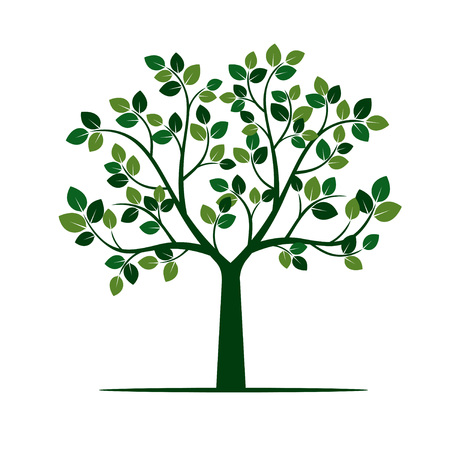 Green Tree with Leaves.