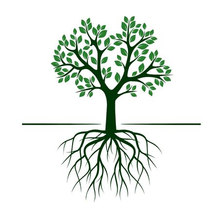 tree: Vintage Green Tree with Roots. Vector Illustration.