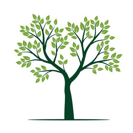 Groene boom met bladeren. Vectorillustratie.