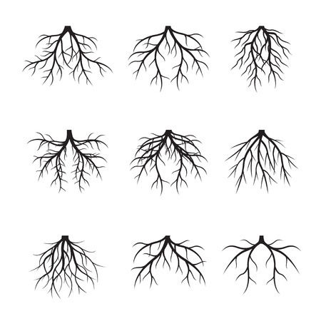 Set Black Roots. Vector Illustration. Stock Illustratie