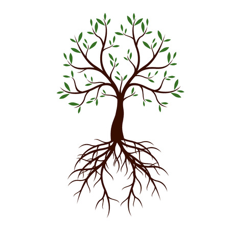 Color Tree with Leaves and Roots. Vector Illustration.
