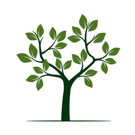 Groene boom. Vector illustratie.