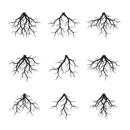 Set of black tree Roots. Vector Illustration