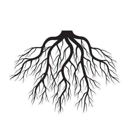 Black roots. Vector Illustration. Stock Illustratie