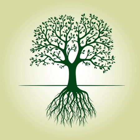 Green tree with Leaves and Roots. Vector Illustration. Illustration
