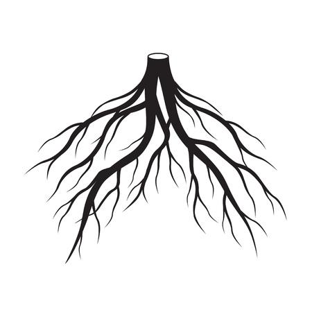 Black roots. Vector Illustration. Ilustração