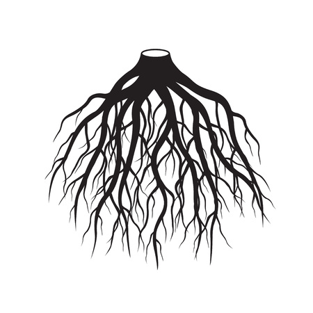 Black roots. Vector Illustration. Illustration