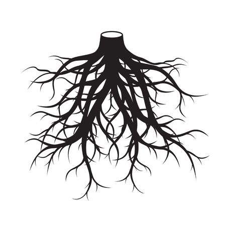 Black Roots Tree. Vector Illustration. Imagens - 92649077