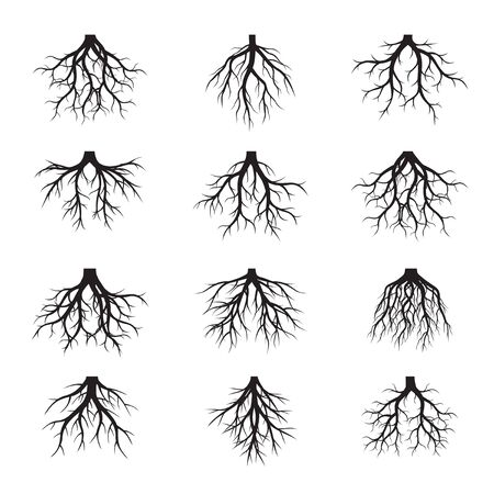 Set of black tree roots vector illustration.